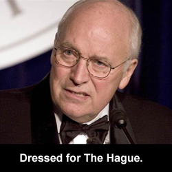 Dressed for The Hague