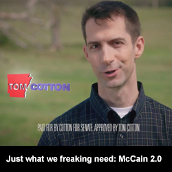 Just what we freaking need: McCain 2.0
