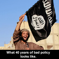 What 40 years of bad policy looks like.