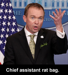 Chief assistant rat bag.