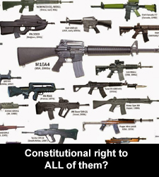 Constitutional right to ALL of them?