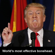 World's most effective bonehead