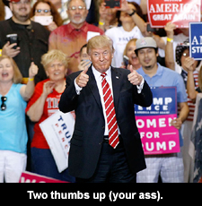 Two thumbs up (your ass)