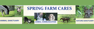 springfarmcares